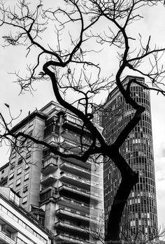 São Paulo em São Paulo  #thiagoprado #fotografothiagoprado #grupofotometrando