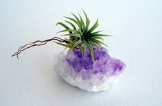 Air Plant Amethyst Crystal Planter by TwistedAcres on Etsy, $30.00