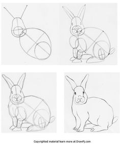 sketches step by step How to draw a rabbit using construction drawing step by step Outline Drawings, Pencil Art Drawings, Art Drawings Sketches, Easy Drawings, Art Illustrations, Drawing Lessons, Step By Step Drawing, Drawing Techniques, Animal Sketches
