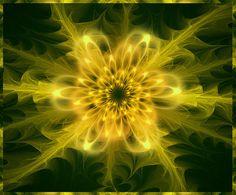 dandelion by HocusFocusClick, via Flickr