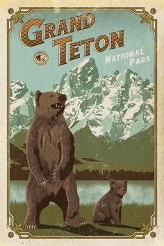 Grand Teton Poster, Grand Teton National Park print, Wyoming Poster, Grizzly Poster, national park q National Park Posters, Us National Parks, Parc National, Grand Teton National Park, Voyage Usa, Vintage Travel Posters, Retro Posters, Poster Vintage, Vintage Signs