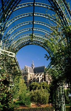 Halles Garden, Paris Reminds me of the last time I was in Paris with Notre Dame in the background
