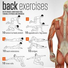 Physical Therapy and Exercise for Sciatica