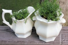 Create Upcycled Garden Containers Out Of Anything ~ Viral Upcycle