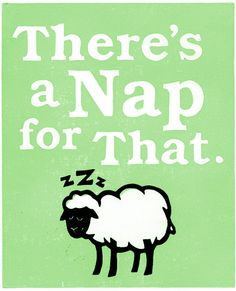 There is a nap for EVERYTHING!