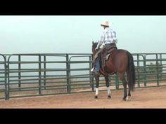 Leg Yield - Horse Training - YouTube