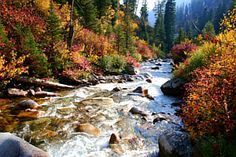 South Fork of the Payette River - Idaho Sawtooth Mountains, Beautiful Landscapes, The Great Outdoors, Places To See, Beautiful Places, Amazing Places, Nature Photography, Scenery, South Fork