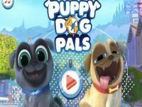 Bingo Ve Roli Oyunu Oyna Gercek Bir Hayvan Macerasinda Bulunacaginiz Puppy Dog Pals Bingo Ve Rolly Bu Macera Oyununda Ortaya Cikacak Olan Oyun Macera Hayvan