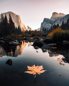 """Fall in Yosemite is a beautiful thing . - ""Fall in Yosemite is a beautiful thing . Yosemite National Park, National Parks, Yosemite Park, Beautiful Places, Beautiful Pictures, Adventure Is Out There, Amazing Nature, Beautiful Landscapes, Beautiful Landscape Photography"