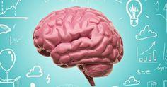 El aprendizaje y dominio de dos o más lenguas, de un modo que permita su uso como si de la lengua materna se tratase ha supuesto muchos interrogantes sobre el funcionamiento del cerebro y ha dado l…
