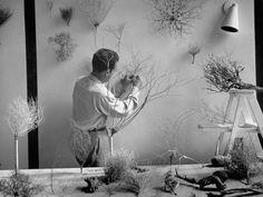 Charles Eames, 1950