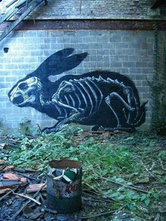 beautiful rabbit skeleton mural bunny spraypaint graffiti street art rabbit of inle rabbits bunnies skull