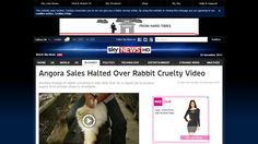 China - Stop all cruelty on animals! Stop producing fur! Release all animals from your cruel captivity.