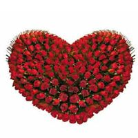 Buy and send tight hug a heart-shaped arrangement of 100 red roses online and get it delivered in New Delhi, Noida, Ghaziabad, Gurgaon on the same day or at midnight Beautiful Red Roses, Fresh Flowers, Beautiful Flowers, Flower Bouquet Delivery, Flower Delivery, Online Flower Shop, Flowers Online, 100 Red Roses, Send Roses
