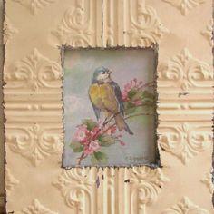 Bird print in tin frame