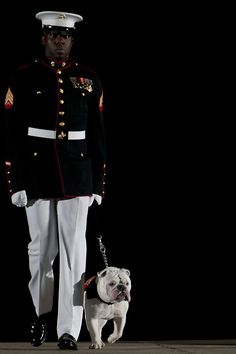 By Cpl. Dengrier Baez-had a true friend Up in heaven and down here. Military Working Dogs, Military Men, Once A Marine, Marine Mom, Patriotic Images, Remember Everyone Deployed, Red Friday, Us Marines, American Soldiers