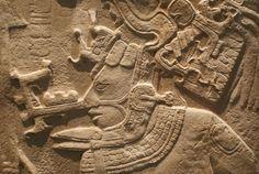 Maya.JPG (581×389)