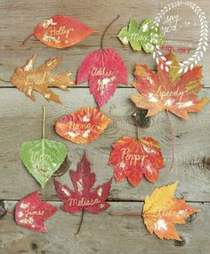 A rainbow of faux leaves are the perfect backdrop for some golden calligraphy.