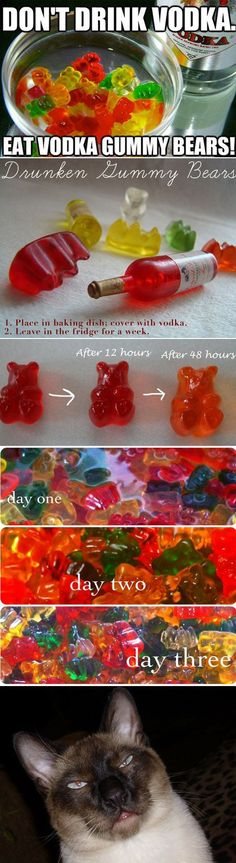 And more excitingly, vodka gummy bears. | 44 Reasons Why Your Life Will Be So Much Easier In 2013 - This I have to attempt for ready loaded Volka anywhere I go!
