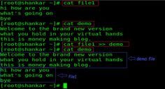 10 Basic Cat Command Examples in Linux.