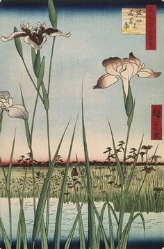 Find the perfect tokyo landscape flowers ukiyo e hiroshige ando japan asian art asia century ukiyo e ukiyoe jp stock photo. Huge collection, amazing choice, million high quality, affordable RF and RM images. Painting Prints, Wall Art Prints, Fine Art Prints, Art Asiatique, Japon Illustration, Botanical Illustration, Iris Garden, Garden Art, Art Japonais