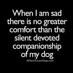 When I am sad, there is no greater comfort than the silent devoted companionship of my dog.