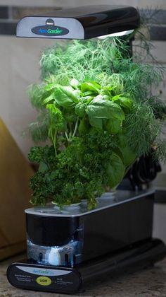 Miracle Gro Aerogarden Sprout Plus With Led White 400 x 300