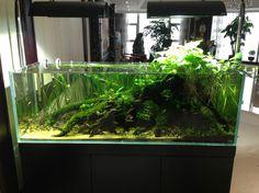 Finnex Planted Cliplight