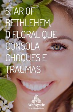 Trauma, Bach Flowers, Star Of Bethlehem, Ayurveda, Reiki, Mystic, Herbalism, Meditation, Therapy