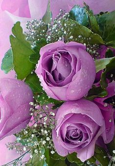 Love the color... #beautifulflowersromantic