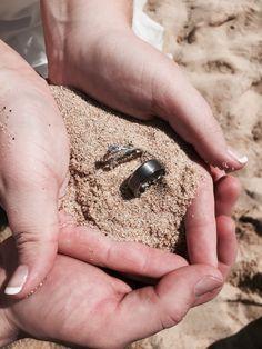 Beach wedding Cruise Ship Wedding, Rings For Men, Vacation, Beach, Men Rings, Vacations, The Beach, Beaches, Holidays Music