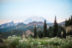 Mount rainier in the summer | sunrise at Mt. Rainier | Things to see in Washington state | Megan Montalvo Photography