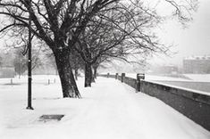 Cracow river path. Check #krakowplaces #igerskrakow #malopolskatogo #malopolska #igtravel #slowtime #slowtravel #zejdźzeszlaku #winter #winterbreak #magical #blackandwhite #outdoor #rivers #riverwalk #trees #ourcandidlife #winterpic #picoftheday #followme #blogtrotters #blogger #podróże #traveling #podróżującarodzina #slowerthanaturtle