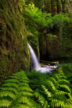 Columbia River Gorge ... Oregon been there