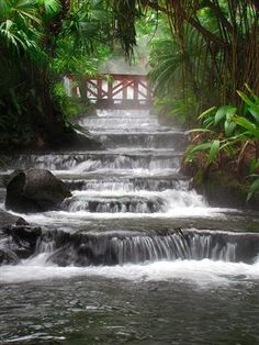 Arenal hot springs, Costa Rica (the river is heated by the volcano)