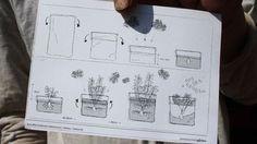 Gemüse aus dem Supermarkt? Kartoffeln kann man auch auf dem Balkon pflanzen. Die Mitarbeiter des Berliner Prinzessinnengartens erklären, wie's geht.