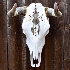 Beautiful Bull skull
