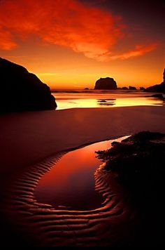 Taken by Mark Rasmussen Coastal Splendor captures just that, the Splendor of the Coast. The intriguing shape of the tidal pool, framed in the warmth of the reflected sunset, echoes the shape of the clouds, gloriously. Beautiful Sunset, Beautiful Places, Beautiful Pictures, Oregon Coast, Ciel, Vacation Destinations, Belle Photo, Beautiful Landscapes, Sunsets