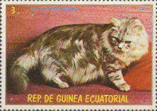1978 Cats