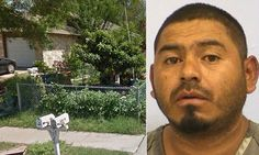 Texas man wanted for having sex with chain-link fence Texas Man, Chain Link Fence, Weird Things, Allegedly, Mail Online, Daily Mail, Chicken Wire
