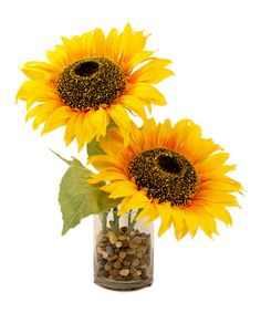 Love this Large Sunflowers in Glass Vase with Pebbles by Creative Displays on #zulily! #zulilyfinds