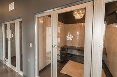 Does Dog Fleas Bite Humans Dog Boarding Kennels, Luxury Dog Kennels, Dog Kennel Designs, Dog Playground, Dog Kennel Cover, Pet Hotel, Pet Resort, Dog Rooms, Dog Daycare
