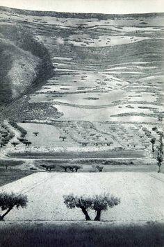 Landscape in Castile, Spain, 1950 Photo by Henri Cartier-Bresson. Veja também: http://semioticas1.blogspot.com.br/2014/03/flagrantes-de-cartier-bresson.html