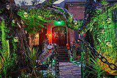 HF The Halloween Lady, Voodoo on the Bayou. How did she make those trees?!