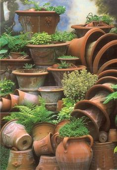 Display at Chelsea Flower Show 1999