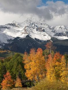 Wilson Peak, Colorado. The 14,023-foot mountain is located in the Lizard Head Wilderness of the Uncompahgre National Forest, in the southern San Juan Mountains south of Telluride off Hwy 145.  #Colorado #Telluride
