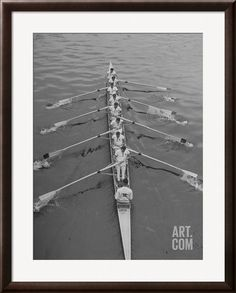 Kent School Rowing Crew Practicing For the Royal Henley Regatta Premium Photographic Print by George Silk at Art.com