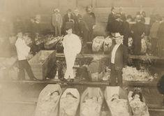 Képtalálat a következőre: Morgue Photos of Titanic Victims Rms Titanic, Titanic Deaths, Titanic Photos, Titanic Sinking, Titanic Ship, Titanic History, Titanic Wreck, Morgue Photos, Titanic Artifacts