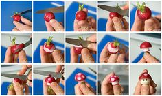 Comment transformer un radis en champignon Mario