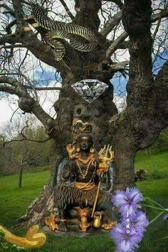 Har Har mahadev Shiva Parvati Images, Mahakal Shiva, Krishna Images, Lord Shiva, Ganpati Bappa Wallpapers, Sri Ganesh, Shiva Lord Wallpapers, Lord Mahadev, Shiva Wallpaper